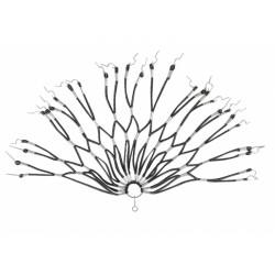 kryt paprsků retro černý